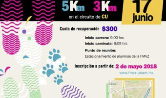 3ra Carrera y caminata con mascotas