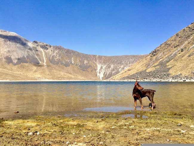 Mila en las Montañas de México