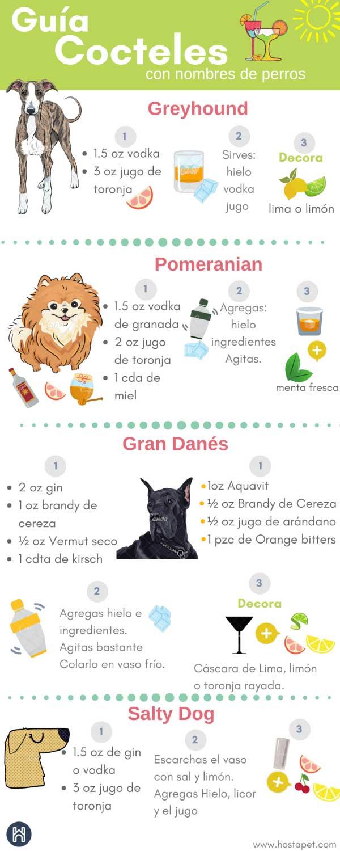 Infografia Cocteles para Perros