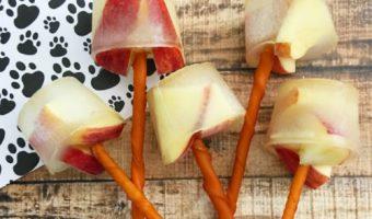 Helado de Manzana y Pollo para perros