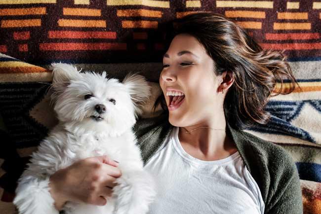 Hoteles Pet Friendly en Guadalajara