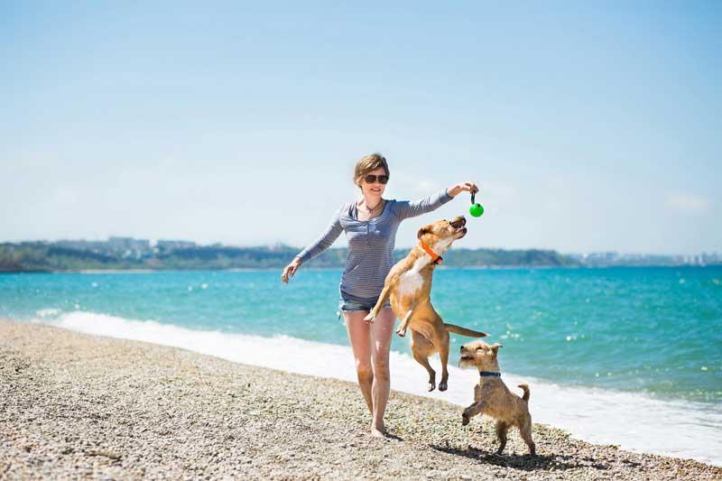 Visitante jugando con sus perros en una playa de Puerto Vallarta