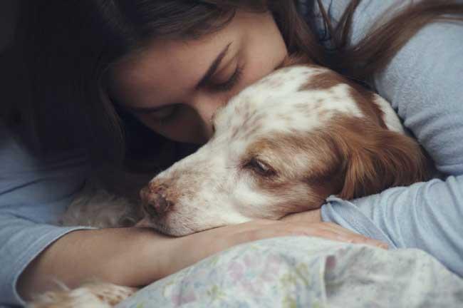 Porque adoptar un perro