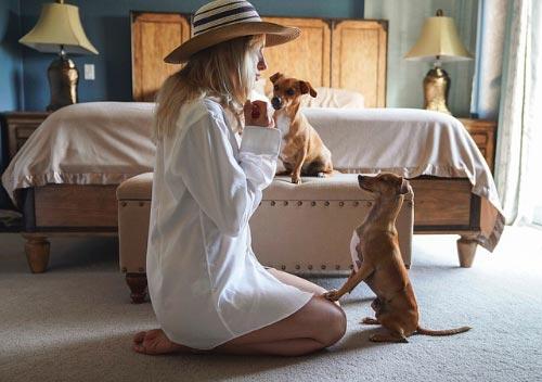 estudio sobre los perros y las mujeres