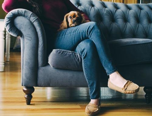 Las mujeres duermen mejor con sus perros que con sus parejas
