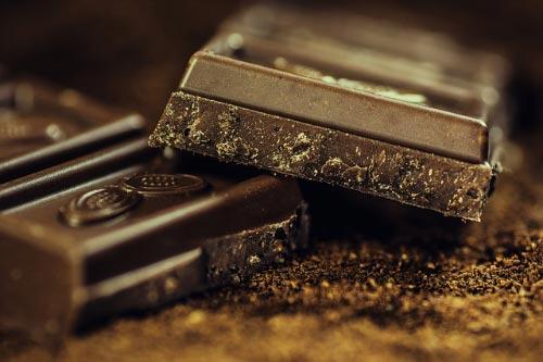 por que el chocolate es peligroso para los perros