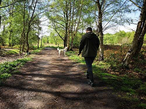 estimulacion mental para paseos
