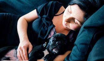 Es malo dormir con mi perro