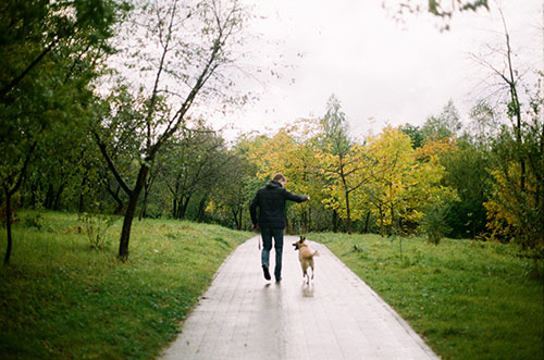 Puedo pasear a mi perro sin correa